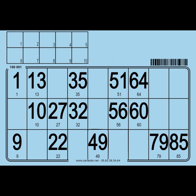 Lot de 500 cartons de loto individuels - Support : Carton 2.5mm