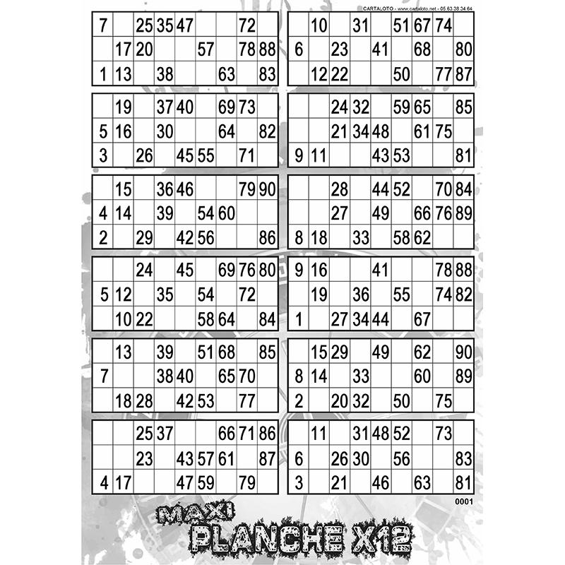 Maxi Planche x12