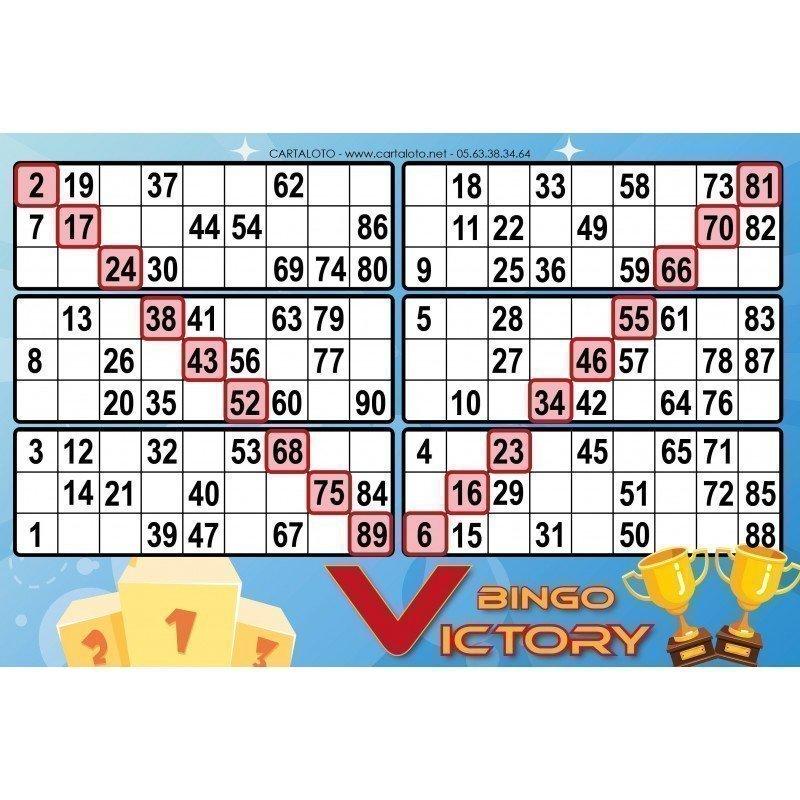 Bingo victory
